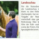 Foto in BayernsPferde