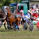Barthelmarkt Pferderennen 2009