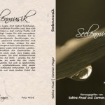 """Buchcover für """"Seelenmusik"""""""