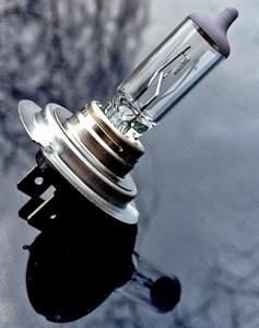 H7 12V 55W Glühbirne