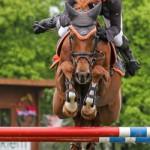Pferd International 2013