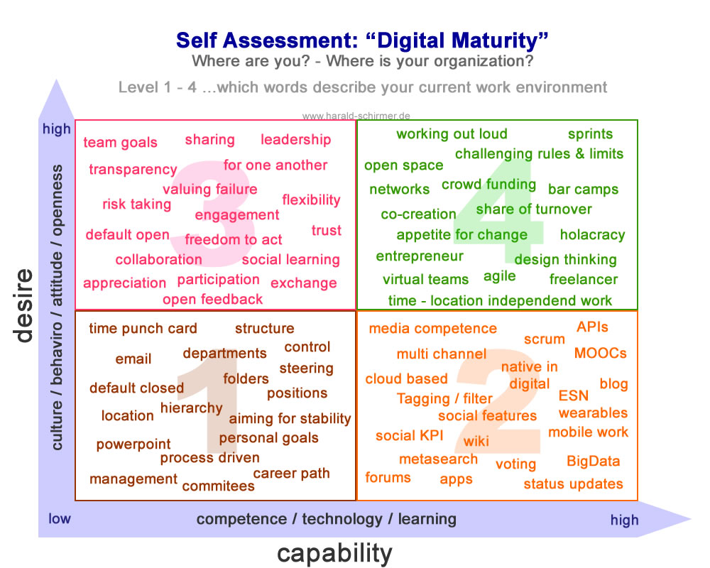 Self Assessment - Digital Maturity