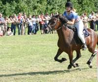 Barthelmarkt Rennen 2007