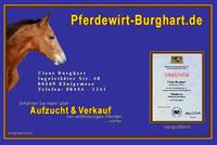 Screenshot Pferdewirt Burghart