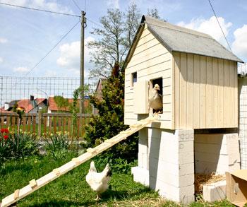 Hühnerhaus 1. Generation