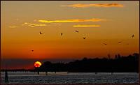 Venedig Sunset 2009